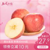 烟台红富士苹果大果5斤脆甜山东当季新鲜水果整箱批发包邮
