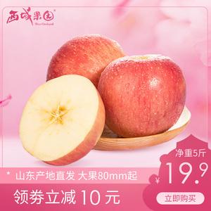 山東煙臺紅富士蘋果5斤大果棲霞產地直發脆甜當季新鮮水果包郵10
