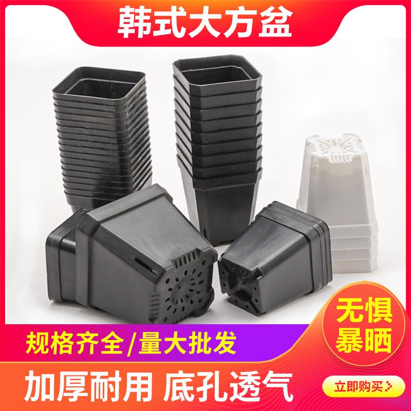 小黑方器加厚小花盆收纳塑料多肉盆