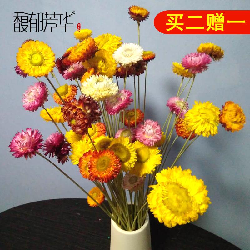 云南天然干花花束真花麦秆菊家居摆设客厅装饰七彩小雏菊拍照道具