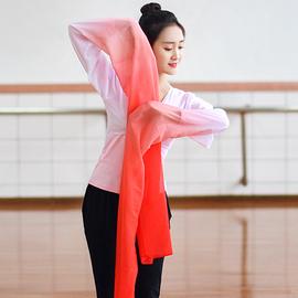 儿童惊鸿舞甩袖成人藏族舞蹈服古典演出服练功水袖服装上衣女袖子图片