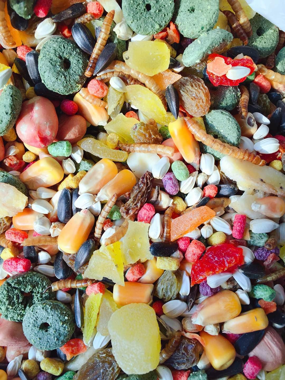 [猪夫人宠屋饲料,零食]自配水果豪华营养仓鼠粮食500克 金月销量82件仅售16.9元