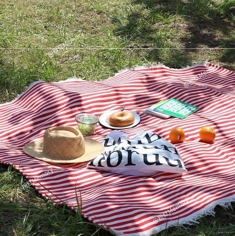 餐桌垫布料棉麻布艺桌布片装春游野餐田园格子野餐布防潮地毯外景
