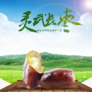 【现货顺丰包邮】宁夏灵武长枣现摘现发新鲜脆甜应季水果冬枣红枣