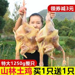 【买一送一】新鲜腌制腊鸡非湖北风干鸡整只咸鸡包邮农家自制特产