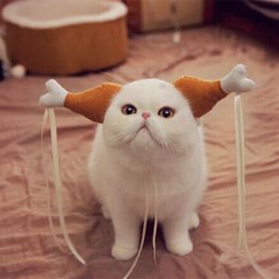 宠物搞笑头饰猫狗小龙女姑姑同款鸡腿发箍婚礼聚会搞笑道具特价促