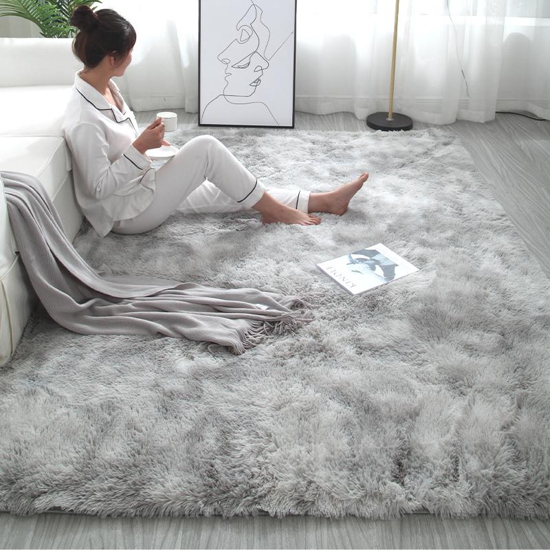 北欧ins地毯卧室少女家用客厅沙发茶几榻榻米垫床边毛毯房间满铺
