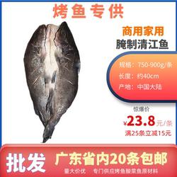 开背腌制清江鱼回鱼新鲜冷冻黑尾香烤鮰鱼叉尾烤鱼店专用750-900g