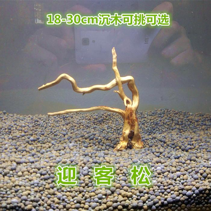 怠け者の水草のトランペットは沈木流木のモシの木の水族の箱の魚のかめを飾ります。