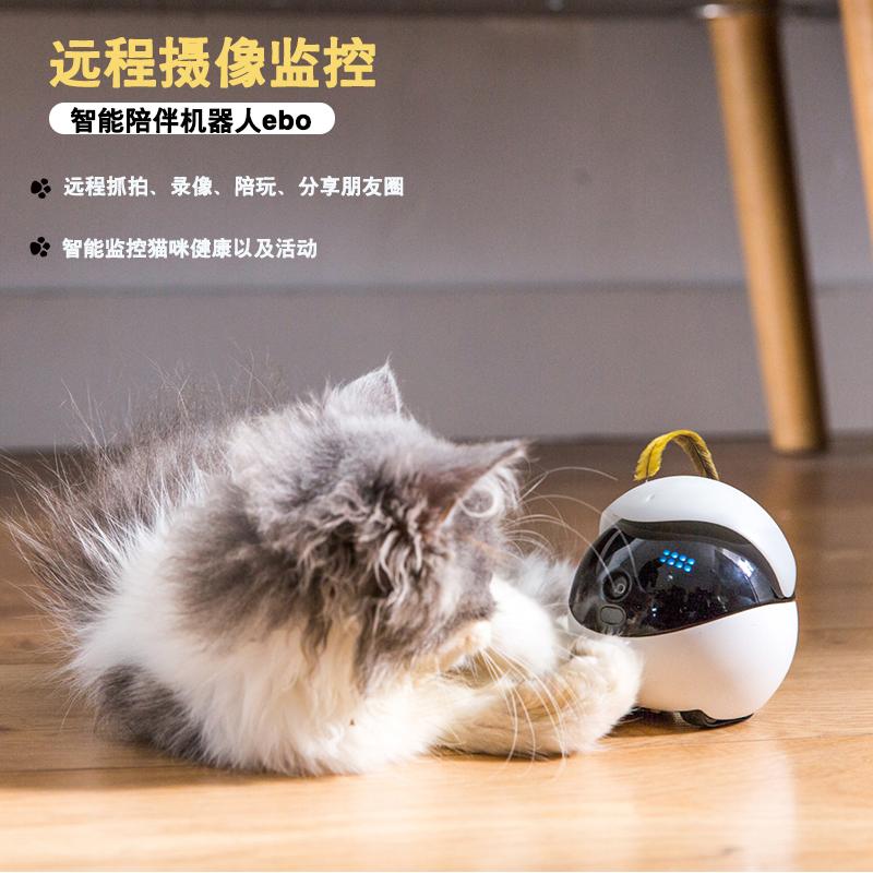 猫咪玩具Ebo逗猫陪伴机器人智能电动逗猫自嗨玩具无线远程监控陪