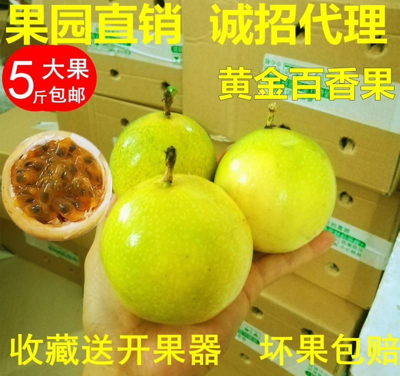 农家特产现摘当季特级新鲜香甜台湾黄皮色黄金百香果5斤包邮 大果