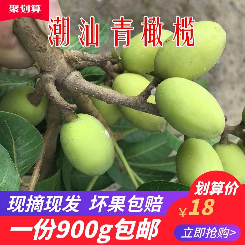 潮汕特产新鲜青橄榄 新鲜生青果新鲜橄榄 现摘现发生橄榄900g包邮