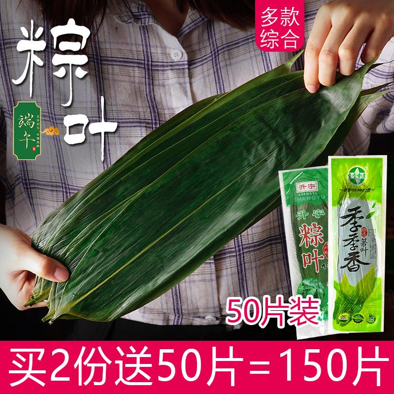 烘焙原料端午节粽子野生新鲜粽子叶真空装粽叶竹叶箬叶50片装