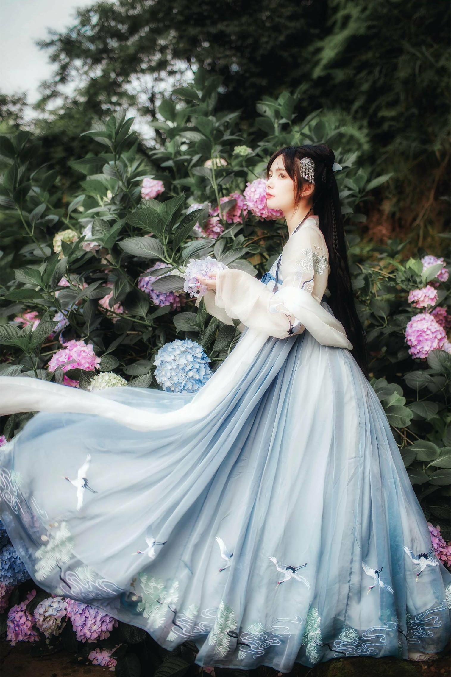 山海夜芙蕖刺绣齐胸渐变大摆裙汉服(非品牌)