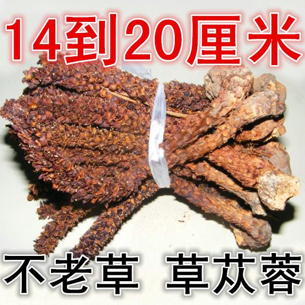 Новый Daxinganling китайская травяная медицина не старая трава горная клейкая рисовая трава Cistanche колонка в качестве материала вина 14-20 см бесплатная доставка по китаю