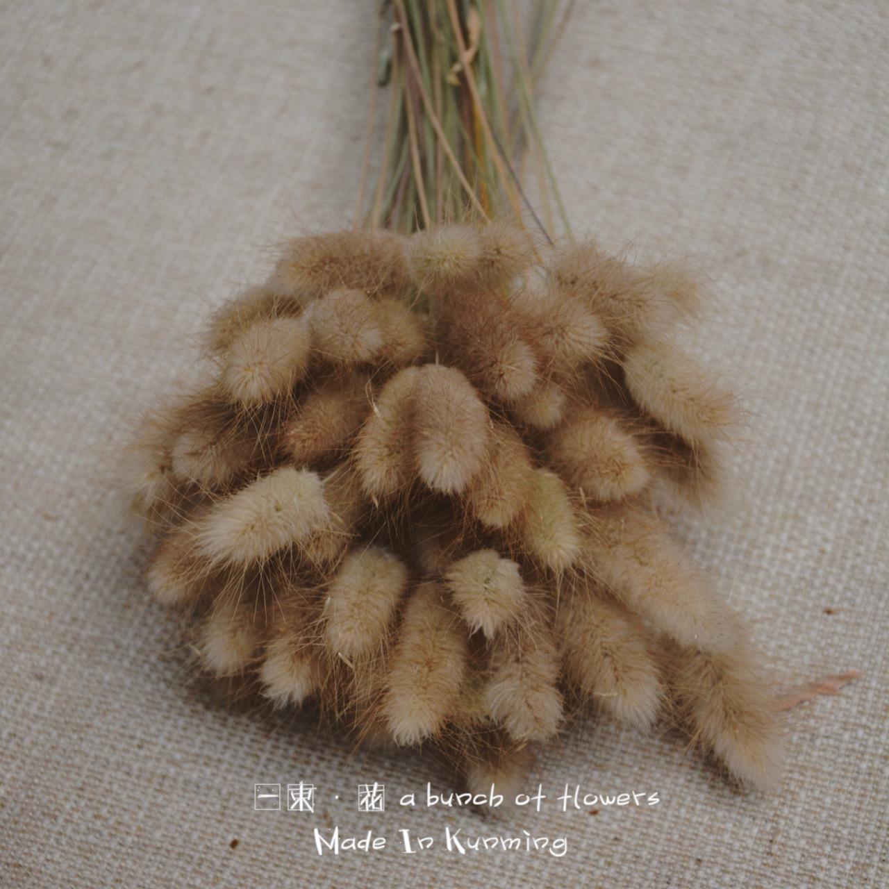 Природный кролик хвост трава сухие цветы букет 10 филиал / 50 филиал / 100 филиал кофе зал магазин цветочная композиция стрельба реквизит