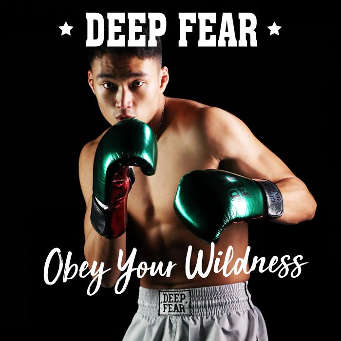 DEEPFEAR 拳击泰拳散打搏击比赛训练拳套 GALAXY 繁星主题拳套 DF