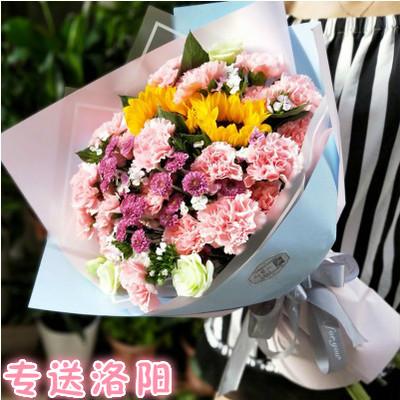 洛阳鲜花店速递同城西工涧西洛龙老城红粉康乃馨花束礼盒妈妈生日