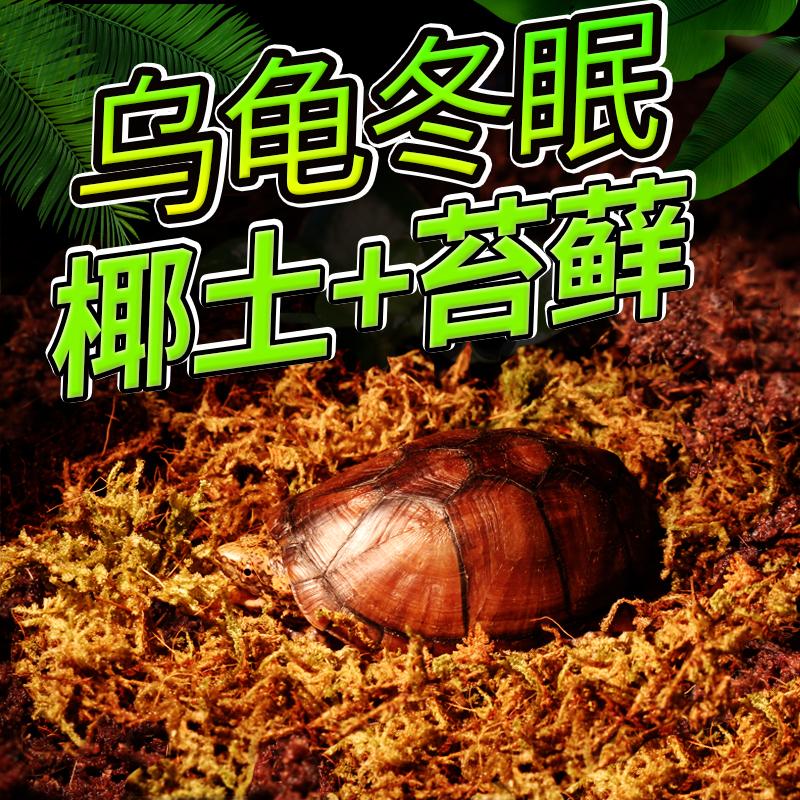 Кокос земля черепаха зима сон статьи увлажняющий мох подъем насекомое домашнее животное подушка лесоматериалы песок паук scorpions угол лягушка сохранение тепла стерильный земля