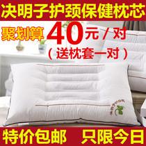 五星级酒店枕芯羽丝绒枕芯白绒枕枕头单人护颈枕一对装雯