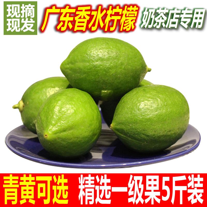 广东新鲜现摘香水柠檬一级青柠檬5斤包邮 无籽柠檬水果奶茶店专用