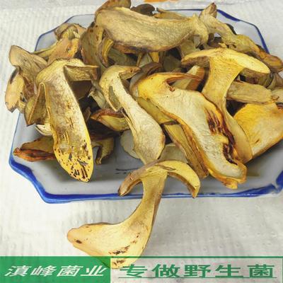 特级野生白葱菌干货 黄牛肝菌云南南华土特产蘑菇 品级高适合送礼