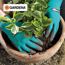 Germany imports Gardena with waterproof anti-skid breathable and dirty resistant garden flower planting horticultural Gloves