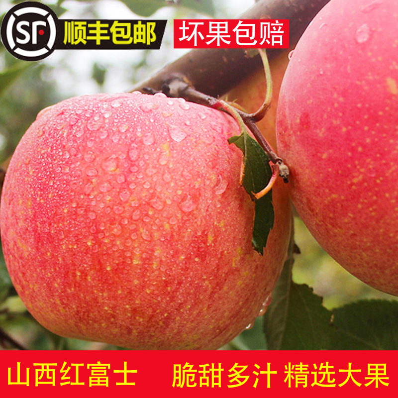 Wanronghong Fuji apple in Yuncheng, Shanxi Province fresh fruits in season