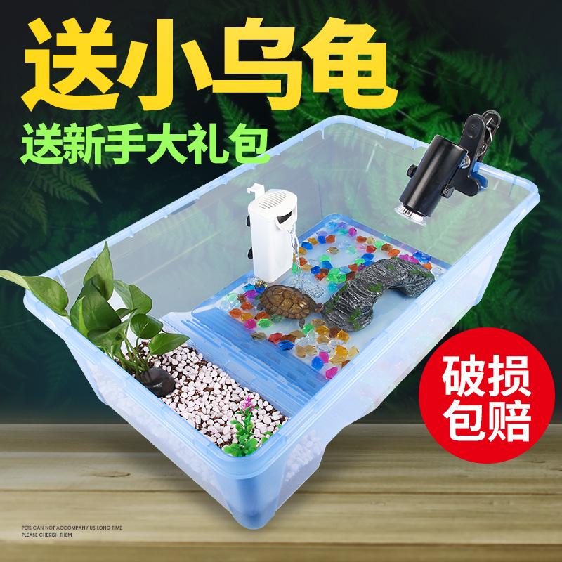 乌龟缸带晒台大型养龟的家用饲养箱