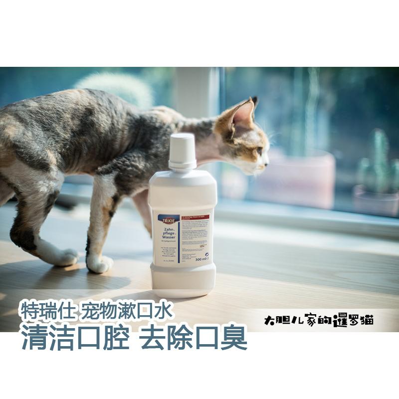 猫狗洁齿水