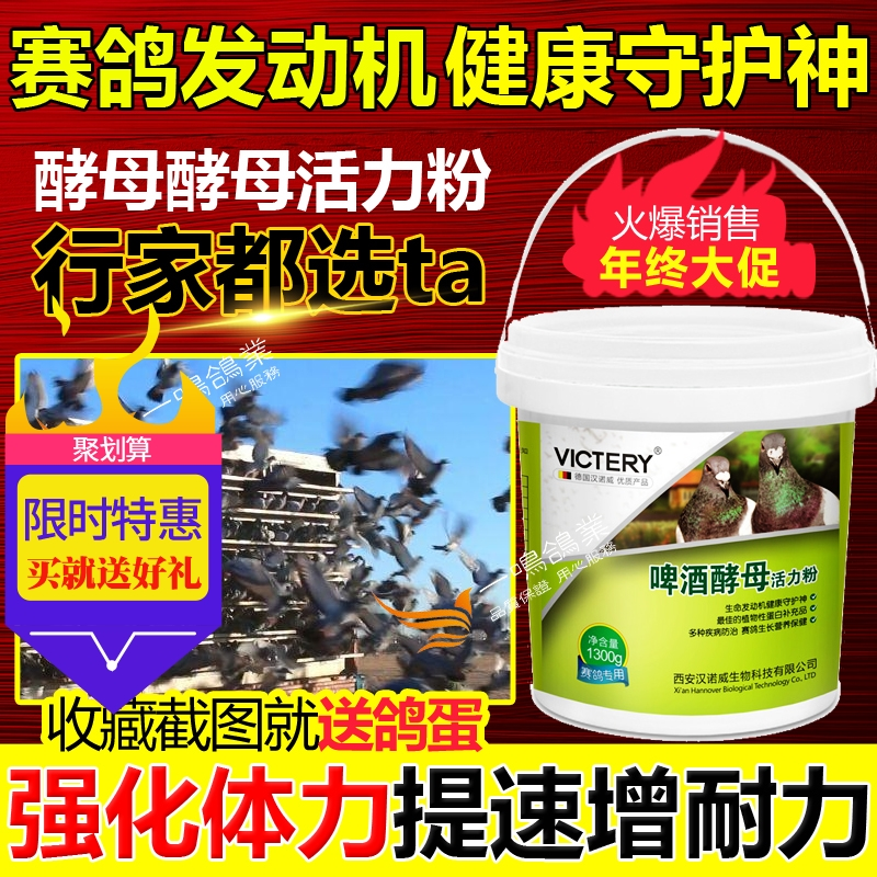 Hanover pigeon medicine Daquan beer yeast 1300g carrier pigeon live bacteria health care products bird pigeon medicine products