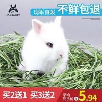 宠尚天2020提摩西草荷兰猪饲料龙猫兔粮提莫干草兔子牧草豚鼠500g
