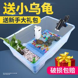 巴西龟 带缸龟缸送2只小乌龟活物活体带晒台多规格龟盆宠物龟包活图片