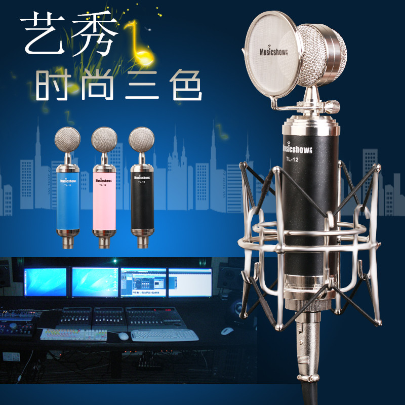 Yixiu tl-12 small bottle condenser microphone + 5.1 built-in sound card + earphone bag and parcel debugging