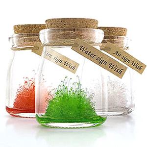 神奇许愿星座水晶御守护 DIY专属于你的守护晶灵 幸运植栽瓶