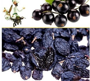 Cheap Xinjiang super black currant raisin snack strong radiation necessary office blueberry dry food