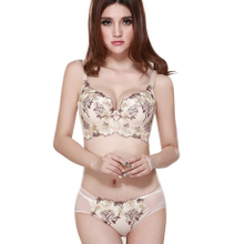 6824f4df9d260 Mr Appearance d. pure thin ladies underwear suits at the beginning of the  embroidery vice
