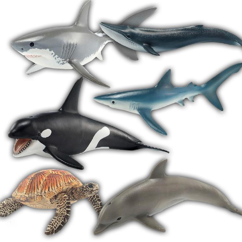 德國思樂模型schleich 海洋動物 殺人鯨 藍鯨白鯊魚 海龜藍鯊