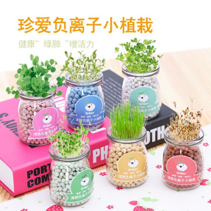 室内桌面迷你可爱diy小盆栽植物 创意办公负离子小草水培开心农场