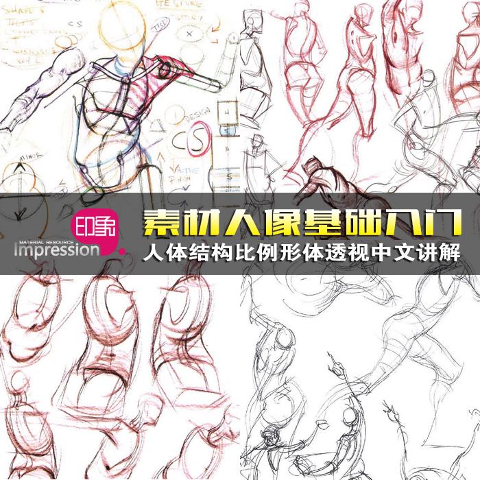 人体结构比例手绘速写素描基础 手脚五官形体透视中文教程