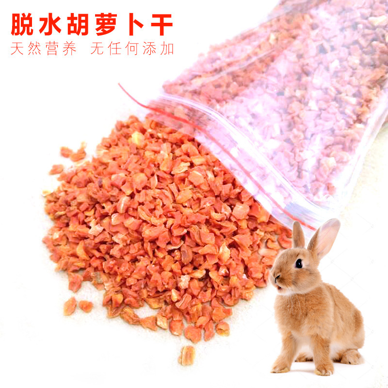 仓鼠龙猫兔子豚鼠荷兰猪