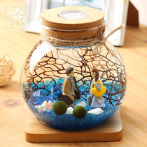 Seaweed ball Ecological Bottle mini potted Chlorella micro landscape glass bottle Marimo desk pendant ecological Ball