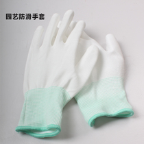 Horticultural gloves pruning and shearing gloves protective gloves