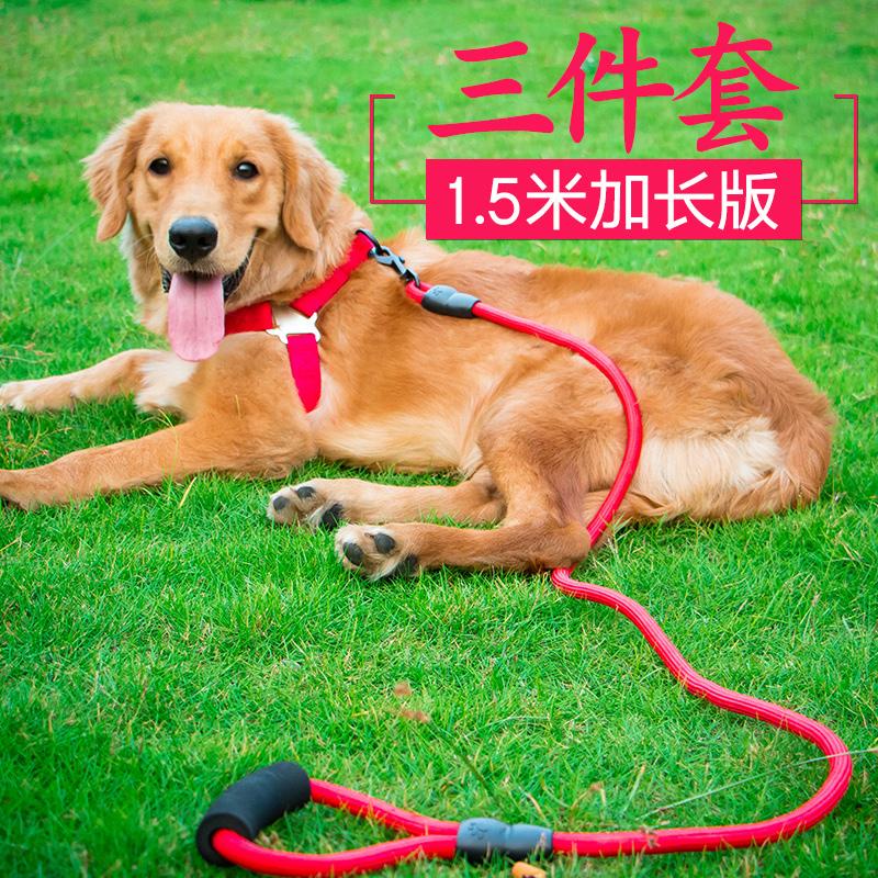 Собака буксировочный трос. щенок цепь ошейники тедди золото волосы кот введите большой тип молодой собака прогулка собака веревка домашнее животное статьи