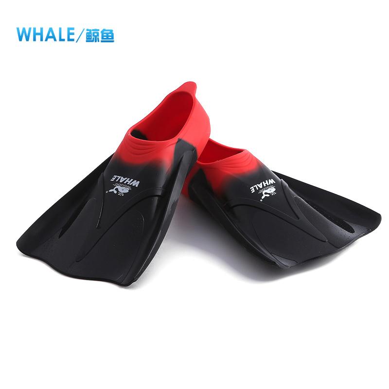 鲸鱼专业游泳训练比赛短脚蹼 潜水脚蹼 浮潜蛙鞋 潜水装备700