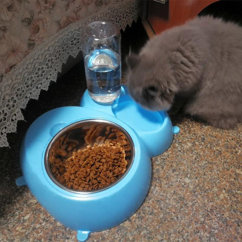 Кот чаша двойной чаша китти еда бассейн собака чаша собака статьи собака еда бассейн автоматическая питьевой тедди золото волосы домашнее животное чаша