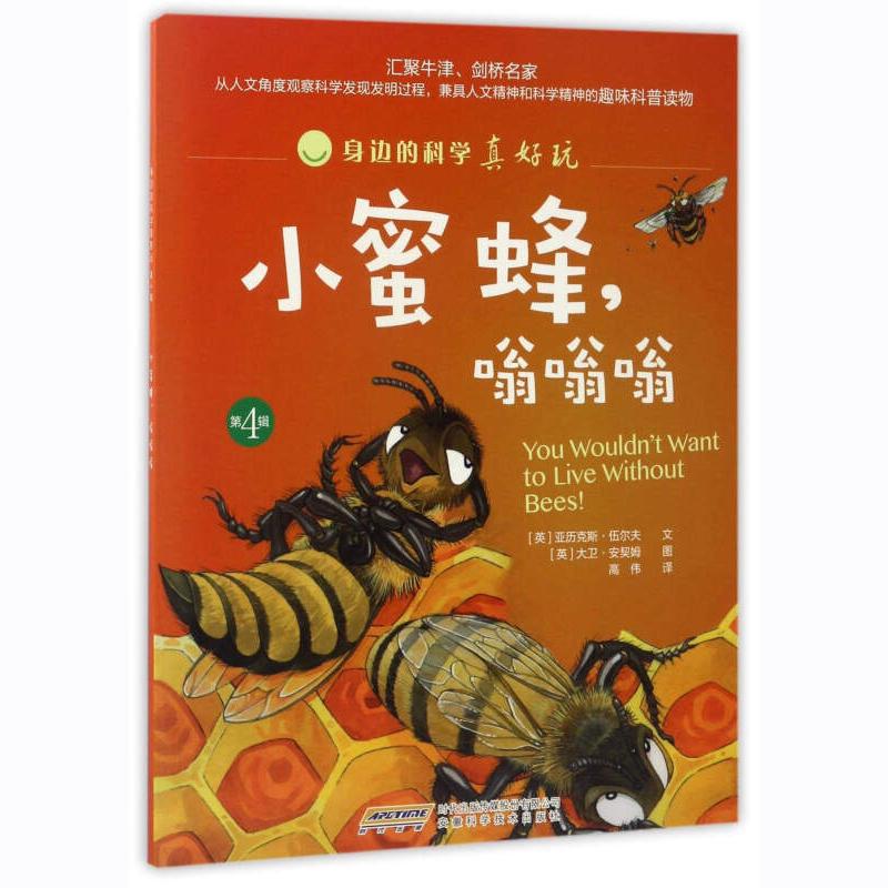 小蜜蜂 嗡嗡嗡 身边的科学真好玩 6-8-10-12-14-16岁儿童科学启蒙素材 绘本 阅读到文字阅读的过渡书 安徽科学技术出版社