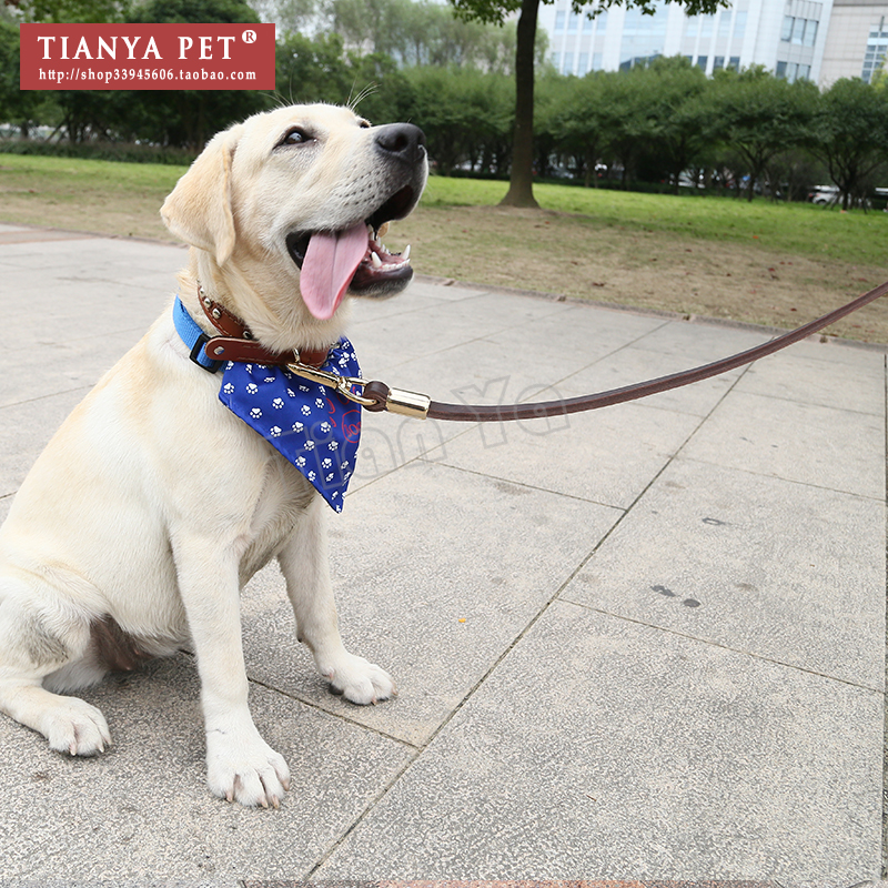 Shengou Xiaoqi same leather collar, traction rope, rivet, leather dog chain, pet collar, dog collar and neck cover