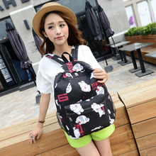 Small pure and fresh and leisure college campus wind lovely han edition double shoulder fashion tide female bag canvas white high school students