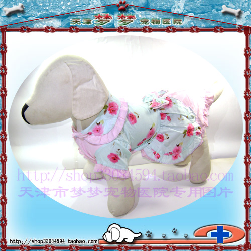 Crown reputation: dog clothing autumn and winter clothing two legs Tianchong two color cloth dress
